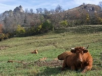 GR465 Hiking from Murat (Cantal) to Conques (Aveyron) 3