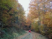 4 GR59 Hiking from le Ballon d'Alsace (Vosges) to Silley-Blefond (Doubs)