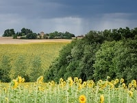 GR653 Hiking from Toulouse (Haute-Garonne) to Auch (Gers) 6