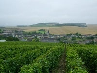 GR654 Walking from Bar-sur-Seine (Aube) to Irancy (Yonne) 3