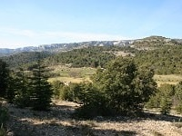 GR6 Hiking from Viens (Vaucluse) to Bayons (Alpes-de-Haute-Provence) 4